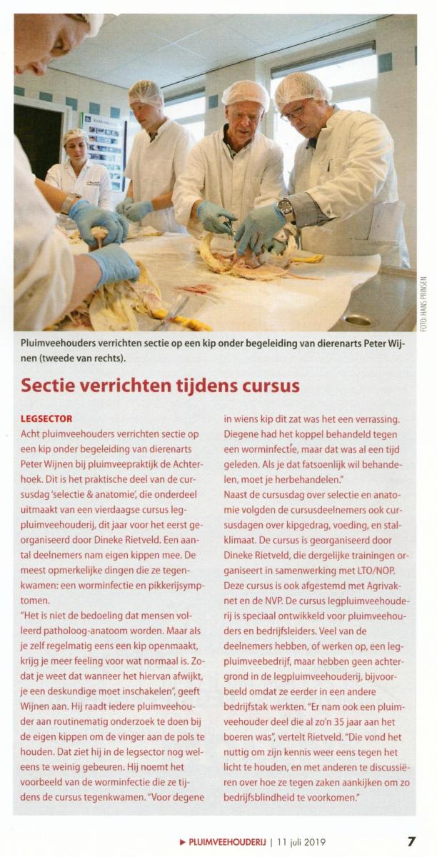Artikel Leghennencursus Vakblad Pluimveehouderij
